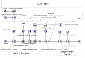 Haccp-Matrix-FMEA-Stephan-Johne-QM-Methoden