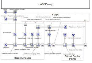 Haccp-Matrix-FMEA-Stephan-Johne-QM-Methoden